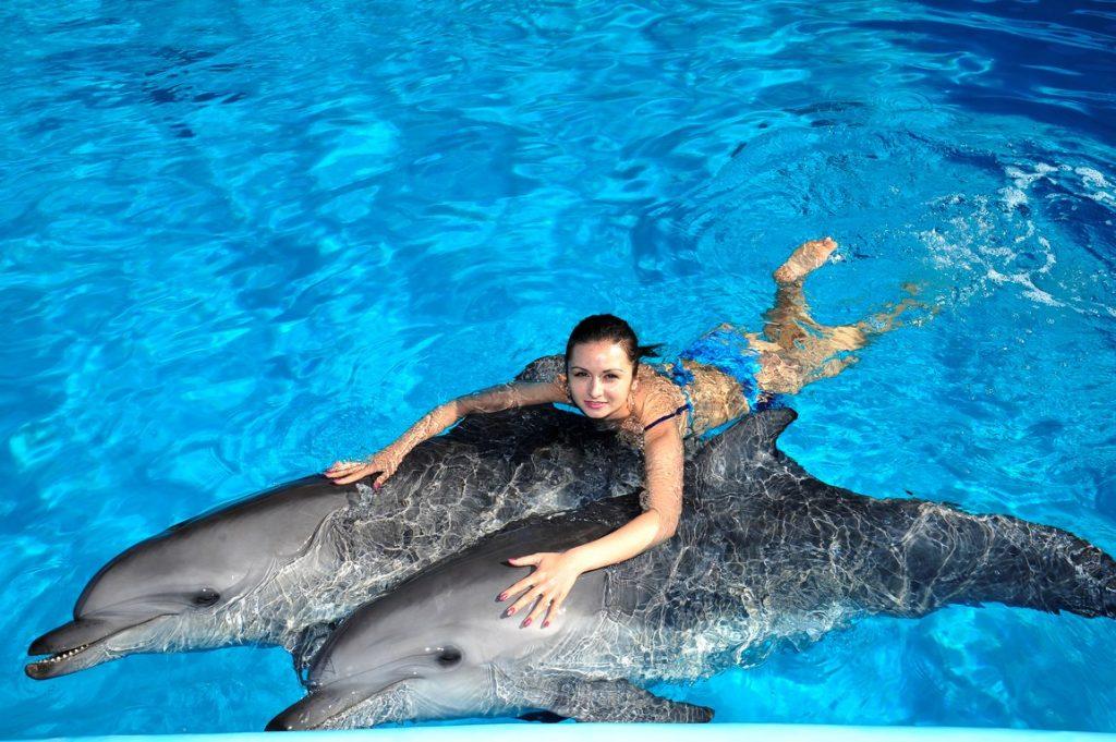 Екскурсія в Дельфінарій